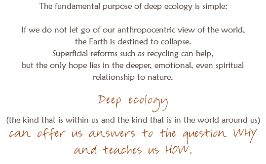 The fundamental purpose of deep ecology is simple: If we do not let go of our anthropocentric view of the world, the Earth is destined to collapse. Superficial reforms such as recycling can help, but the only hope lies in the deeper, emotional, even spiritual relationship to nature. Deep ecology (the kind that is within us and the kind that is in the world around us) can offer us answers to the question WHY and teaches us HOW.