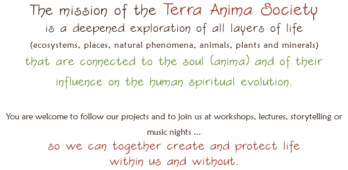 The mission of the Terra Anima Society is a deepened exploration of all layers of life (ecosystems, places, natural phenomena, animals, plants and minerals) that are connected to the soul (anima) and of their influence on the human spiritual evolution. You are welcome to follow our projects and to join us at workshops, lectures, storytelling or music nights ... so we can together create and protect life within us and without.